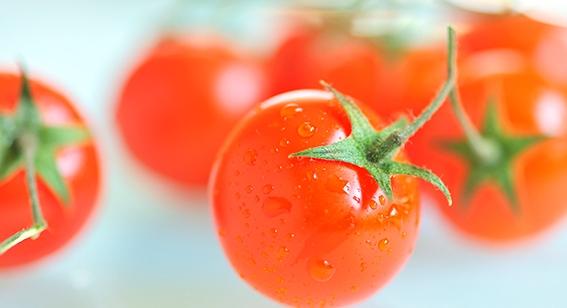Schützen Tomaten vor Prostatakrebs?