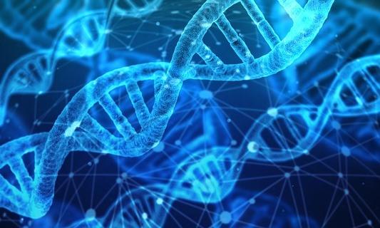 Kann Milch-spezifische miRNA unsere Gene beeinflussen?