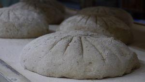 Brot_Teig_Formen