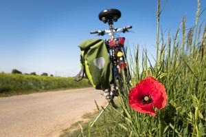 Fahrradfahren_Gesundheit