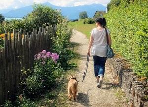 Spaziergang_Gesundheit_Schritt